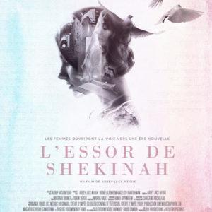 L'essor de Shekinah sur ICIRDI
